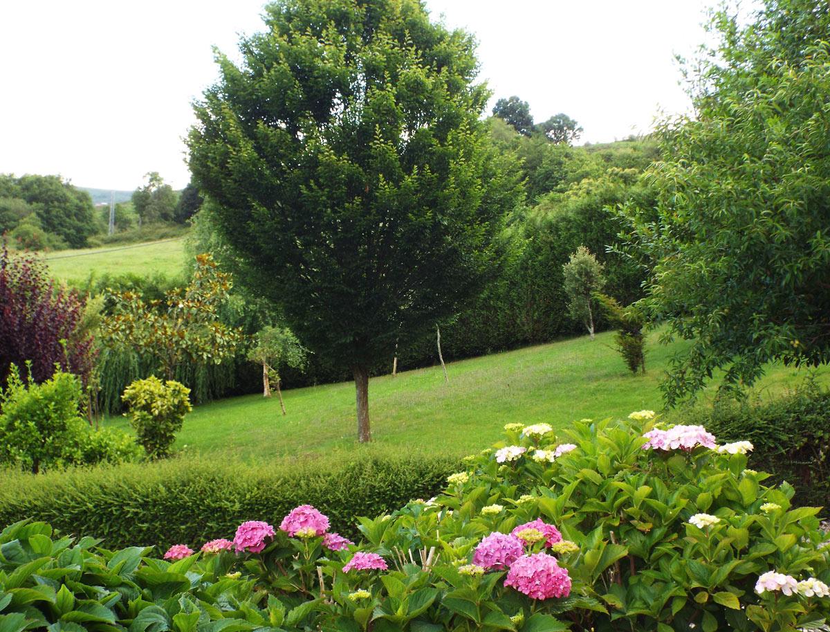 La-Riguera-de-ucieda-Apartamentos-Cantabria-detalles-jardin